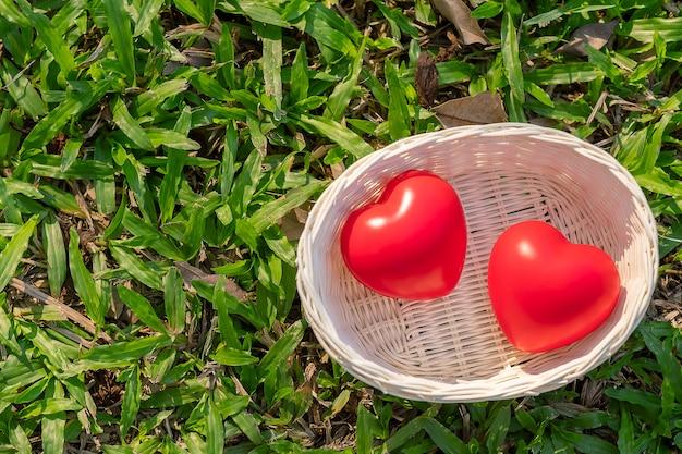 Forma de coração vermelho casal sobre fundo verde natural no jardim ao ar livre