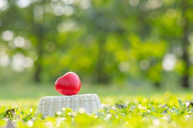 Forma de coração vermelho em fundo verde natural no jardim ao ar livre