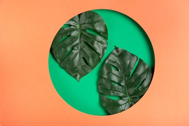 Forma geométrica de papel com folhas realistas