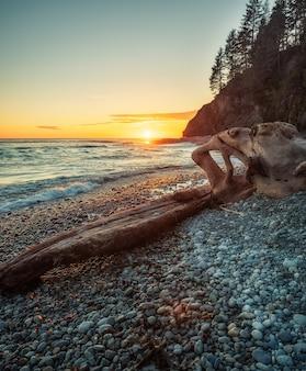 Formação rochosa marrom na beira-mar durante o pôr do sol
