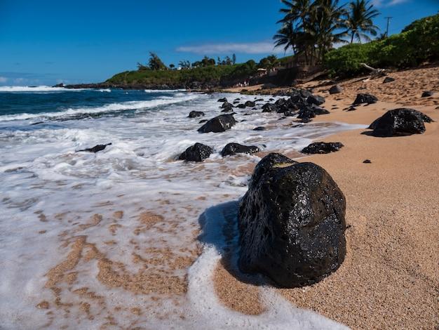 Formação rochosa marrom na beira-mar