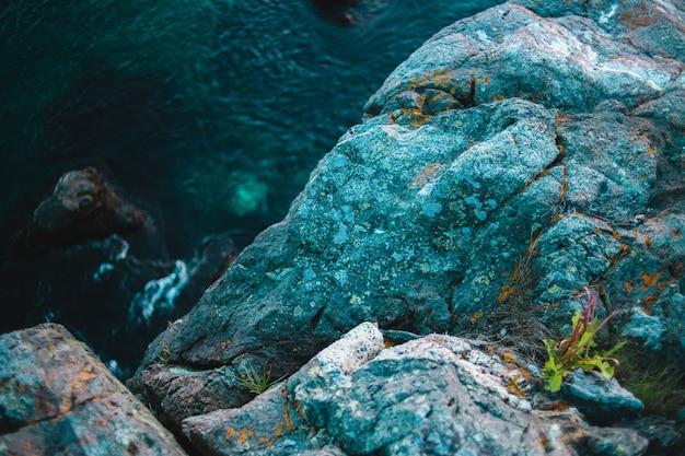 Formação rochosa verde e cinza