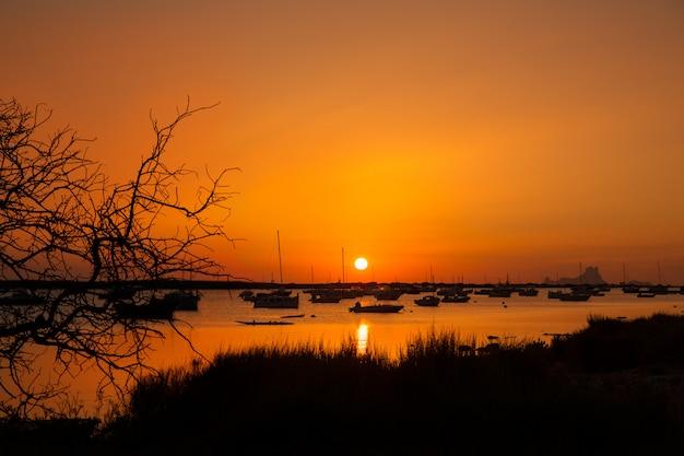 Formentera pôr do sol em estany des peix com ibiza es vedra