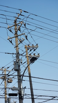 Fornecimento de poste elétrico com céu azul