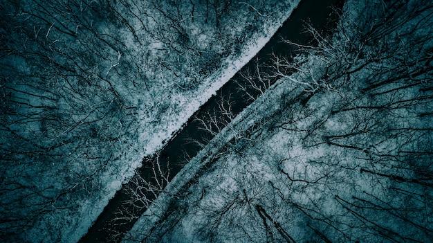 Foto aérea aérea bonita de uma estrada estreita entre árvores durante o inverno