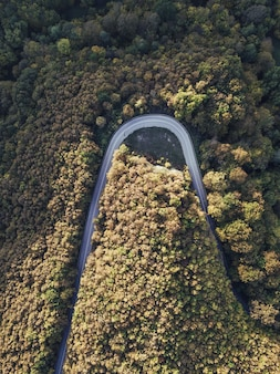 Foto aérea aérea de uma estrada curvada nas colinas da floresta