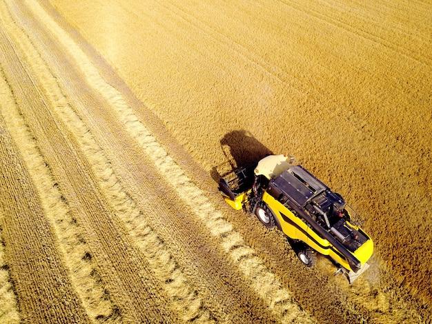 Foto aérea da ceifeira amarela, trabalhando no campo de trigo. perspectiva de olho de pássaro.