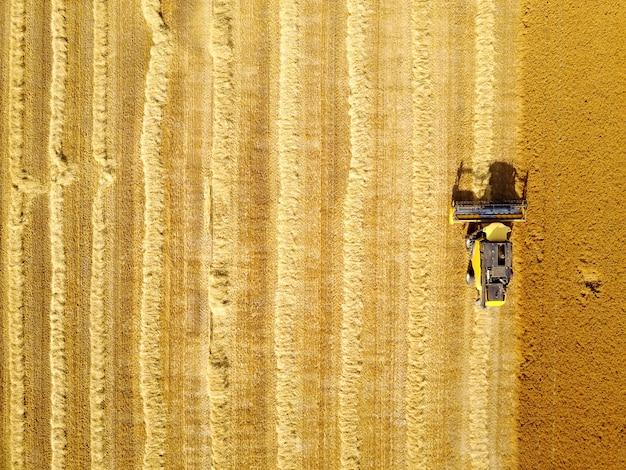 Foto aérea da ceifeira amarela, trabalhando no campo de trigo.