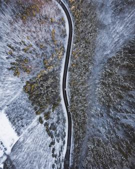 Foto aérea de cima para baixo de uma longa estrada no meio de árvores e neve
