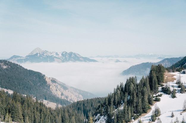 Foto aérea de uma bela cordilheira coberta de neve e pinheiros verdes