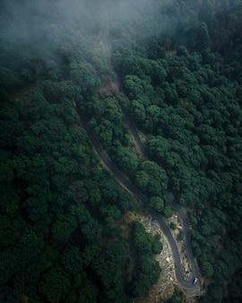 Foto aérea de uma estrada na floresta com árvores verdes altas e densas