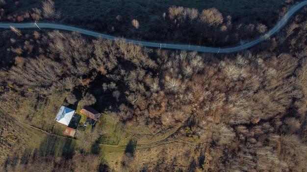 Foto aérea de uma floresta com árvores densas, uma estrada e uma pequena construção - ambiente verde