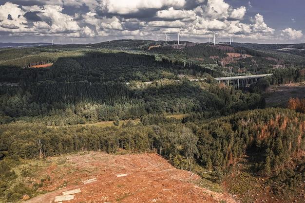 Foto aérea de uma floresta com árvores exuberantes no outono