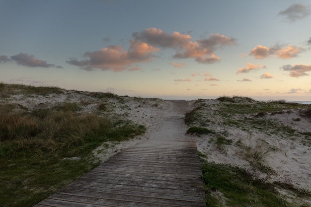 Foto ampla de um caminho de madeira na areia com grama ao redor e céu nublado