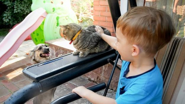 Foto aproximada de um adorável menino de 3 anos acariciando o gato cinza no quintal da casa