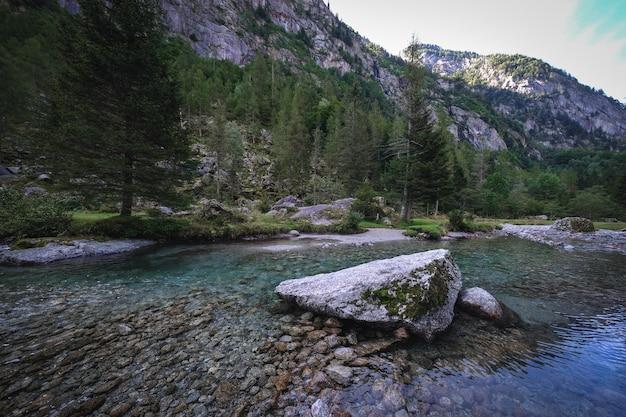 Foto aproximada de um lago