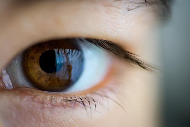 Foto aproximada de um olho marrom asiático