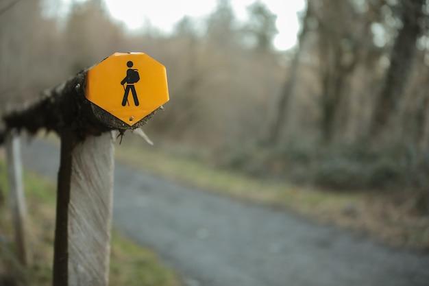 Foto aproximada de uma placa amarela na floresta