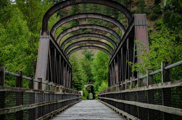 Foto aproximada de uma ponte em um parque