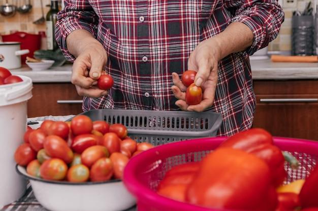 Foto autêntica de mãos femininas sujas de uma mulher madura, análise da colheita de tomate, preparação para enlatar