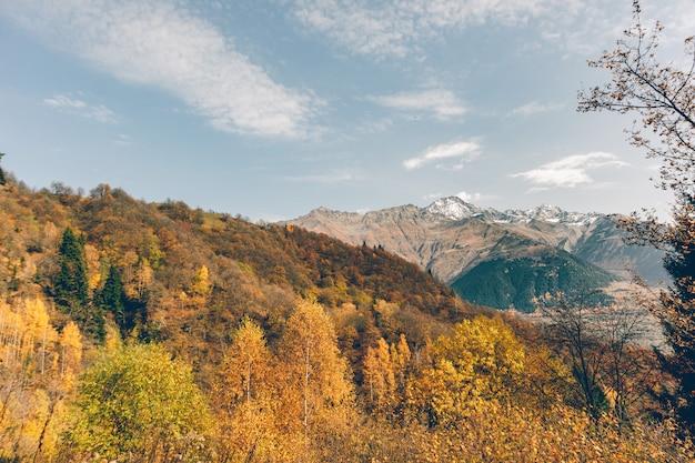 Foto bonita da paisagem da montanha do outono com cor amarela e alaranjada no outono.