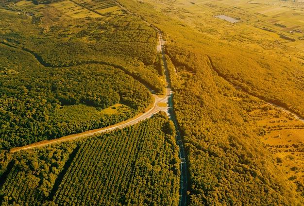 Foto bonita da paisagem do zangão, vista superior da floresta com estrada de asfalto durante o pôr do sol em um horário de verão