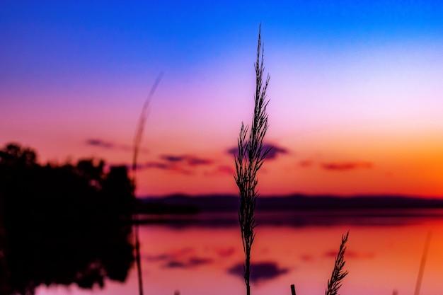 Foto com foco seletivo de uma praia ao pôr do sol