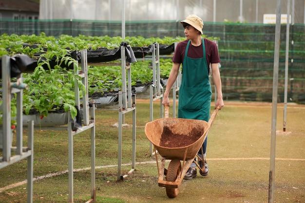 Foto completa do jardineiro masculino indo em direção à câmera, empurrando o vagão com o solo