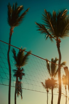 Foto da rede de vôlei na praia por trás do pôr do sol de verão azul e palmas