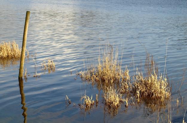 Foto de alto ângulo de água limpa no lago