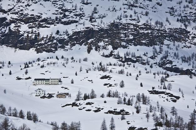 Foto de alto ângulo de uma bela paisagem com muitas árvores cobertas de neve