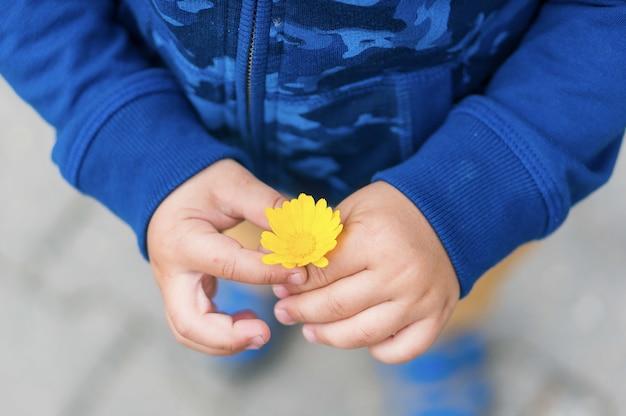Foto de alto ângulo de uma criança segurando uma flor amarela