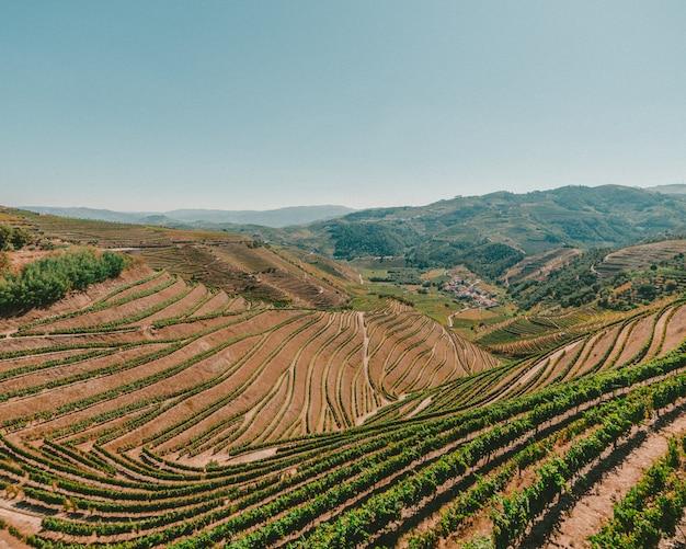 Foto de alto ângulo de uma paisagem com grama verde e uma cadeia de montanhas