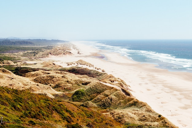 Foto de alto ângulo de uma paisagem verde perto da praia com as ondas do mar baterem