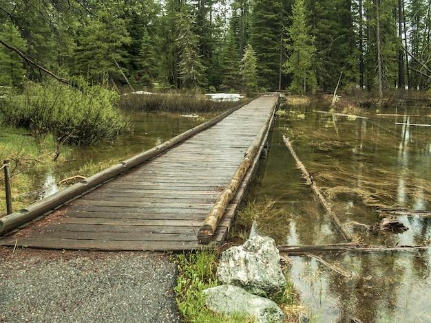 Foto de alto ângulo de uma ponte de madeira no lago do parque nacional grand teton, eua