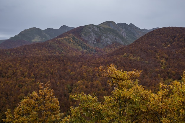 Foto de alto ângulo do parque nacional da europa capturada no outono na espanha