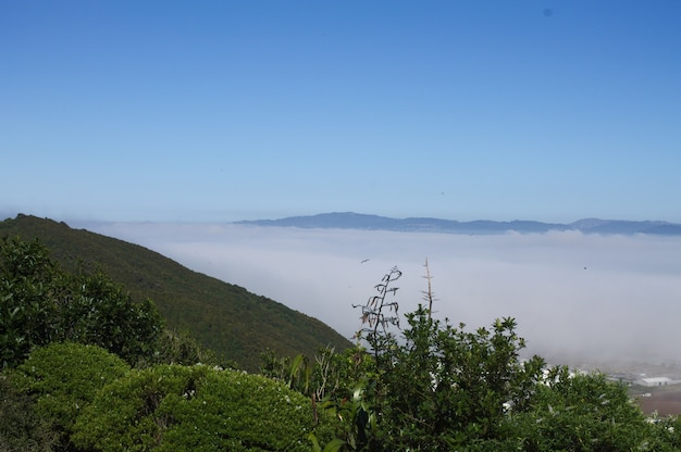 Foto de alto ângulo do vale hutt na nova zelândia coberto de névoa