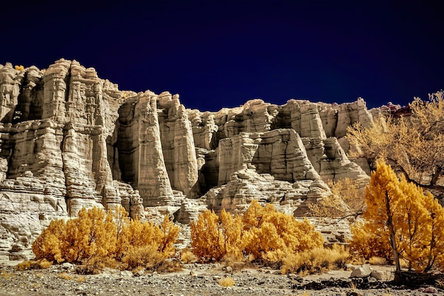 Foto de baixo ângulo das árvores em frente aos lindos penhascos rochosos