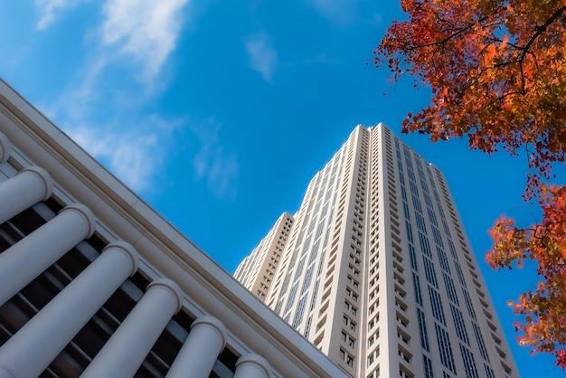 Foto de baixo ângulo de edifícios altos de vidro perto de árvores sob um céu azul nublado