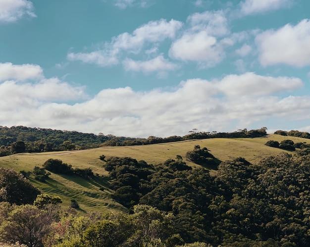 Foto de bela paisagem da colina verde com árvores sob um céu azul claro com nuvens brancas