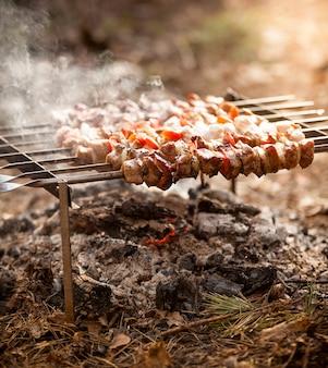 Foto de close de kebab pegando fogo na floresta
