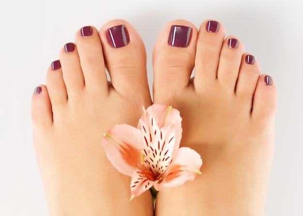 Foto de close de um pé feminino com bela pedicure após procedimento de spa em branco