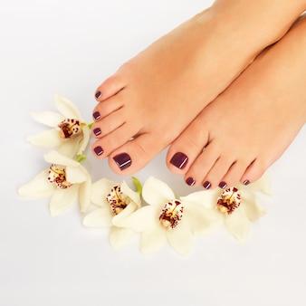 Foto de close de um pé feminino com bela pedicure após procedimento de spa no espaço em branco