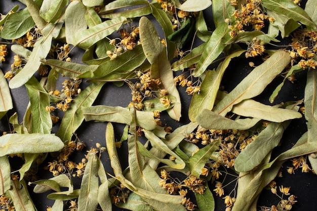 Foto de close-up de flores de tília secas para chá, em fundo preto.
