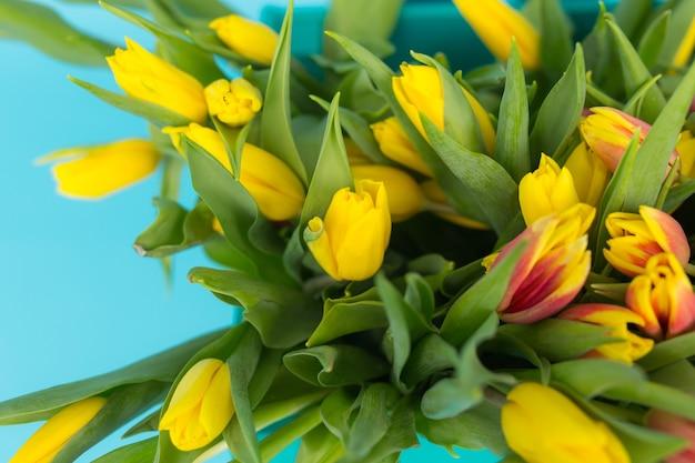Foto de close-up de tulipas amarelas na parede azul