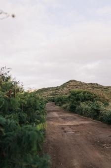 Foto de foco raso de uma trilha de terra com uma colina verde e um céu nublado