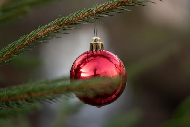 Foto de foco seletivo de um enfeite de natal vermelho pendurado em um pinheiro