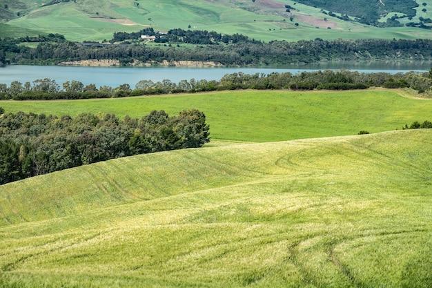 Foto de grande angular de campos verdes em frente à água com árvores e arbustos crescendo no topo