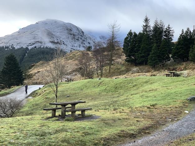 Foto de grande angular de montanhas cercadas por árvores e vegetação