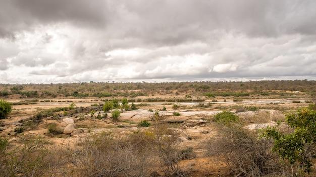 Foto de grande angular de um campo com arbustos e plantas sob um céu nublado